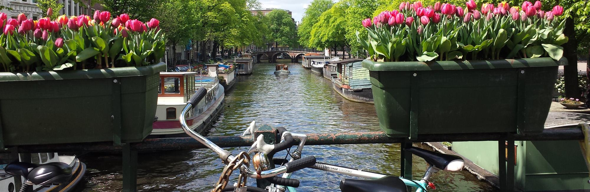 Dutch Bike Tours Cycling holiday Cycling from Amsterdam