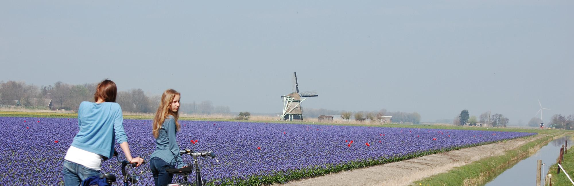 Dutch Bike Tours Cycling holiday Holland above Amsterdam