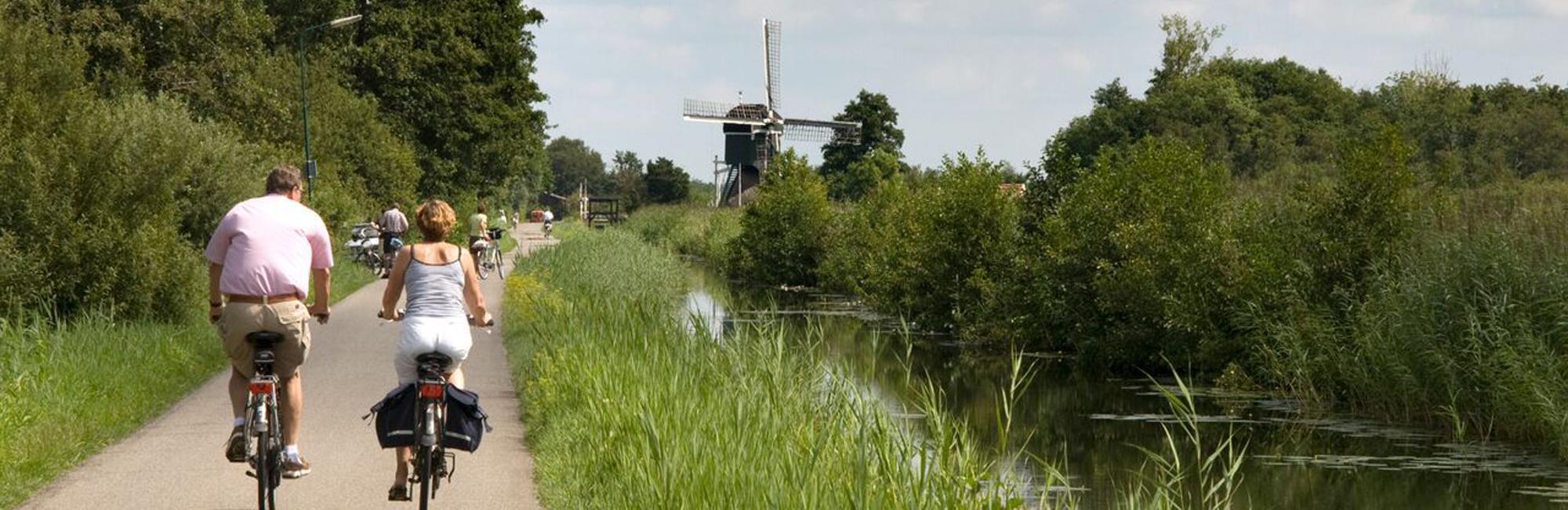 Dutch Bike Tours Cycling holiday The Green Heart Tour