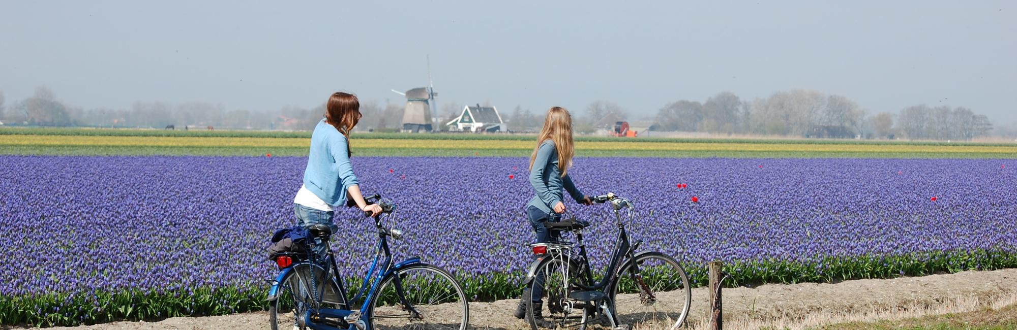 Dutch Bike Tours Cycling holiday Lake IJssel and V.O.C.Tour