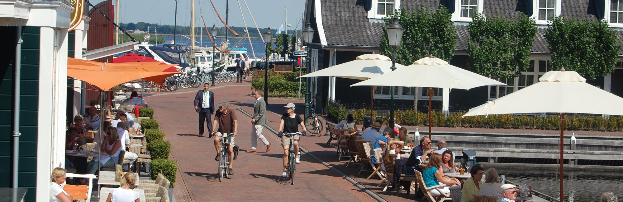 Dutch Bike Tours Cycling holiday Lake IJssel Tour - classic